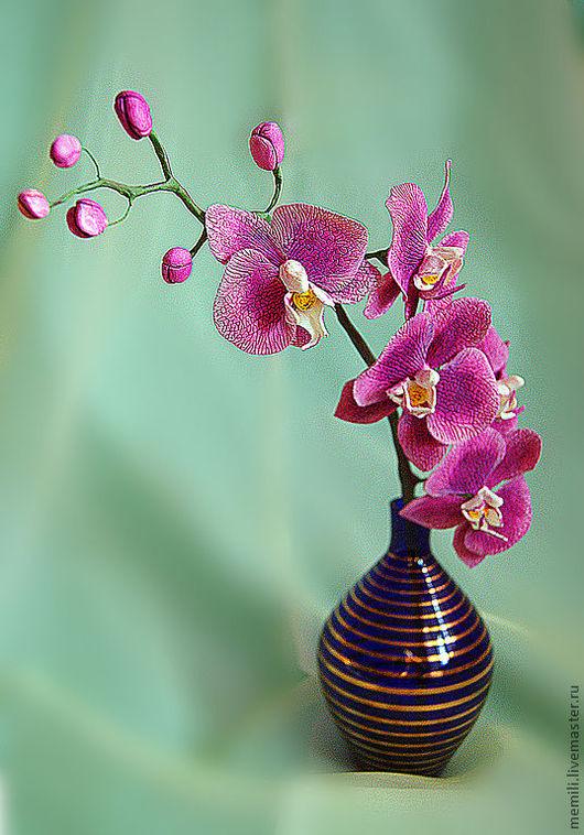 Цветы ручной работы. Ярмарка Мастеров - ручная работа. Купить Орхидея Фаленопсис. Handmade. Брусничный, орхидея из глины, Холодный фарфор