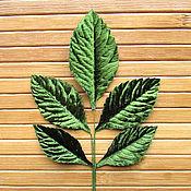 Материалы для творчества handmade. Livemaster - original item the leaves of the rose are dark green, seruling. Handmade.