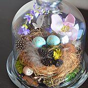 Цветы и флористика ручной работы. Ярмарка Мастеров - ручная работа Пасхальная колба-купол с гнездом. Handmade.