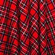 Order Skirt Red tartan. Evgeniya Petrik. Livemaster. . Skirts Фото №3