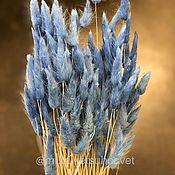Цветы ручной работы. Ярмарка Мастеров - ручная работа Лагурус синий. Handmade.