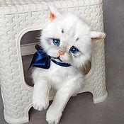 handmade. Livemaster - original item Teddy Animals: Kitten Zeus. Handmade.