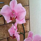 Цветы и флористика ручной работы. Ярмарка Мастеров - ручная работа Розовая орхидея. Handmade.
