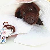 Куклы и игрушки handmade. Livemaster - original item Soft toys: Soft toy dog Labrador puppy chocolate. Handmade.