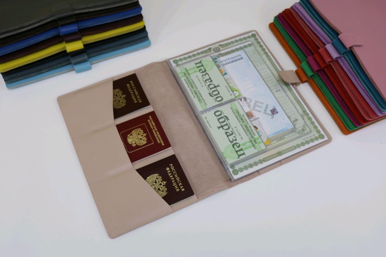 Organizer for documents A4 format powder, Folder, Moscow,  Фото №1