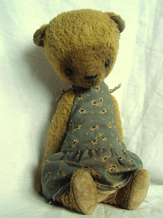 Мишки Тедди ручной работы. Ярмарка Мастеров - ручная работа. Купить Кэт. Handmade. Мишки тедди, матовые глаза