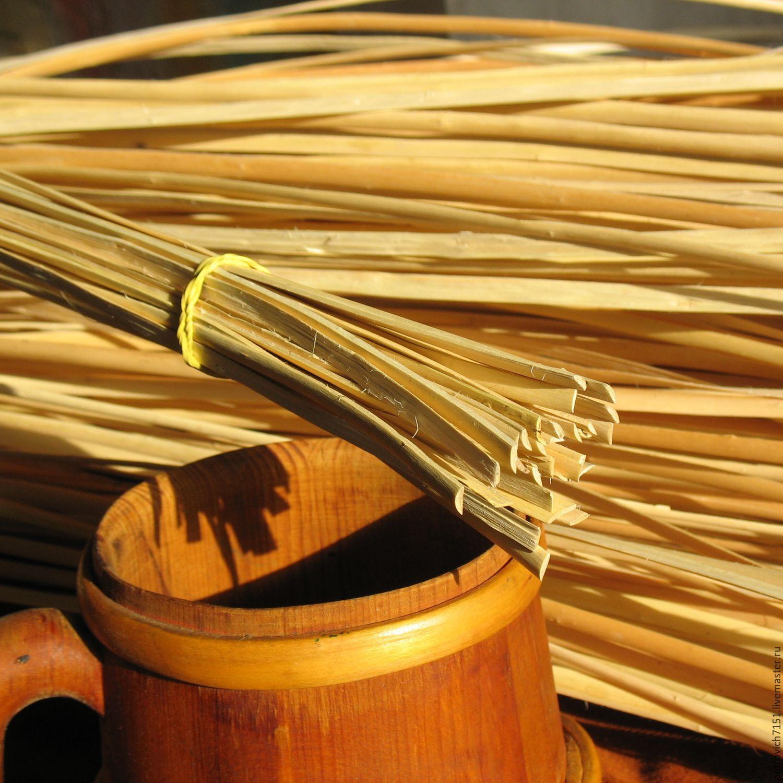 Когда и как заготавливают лозу ивы для плетения