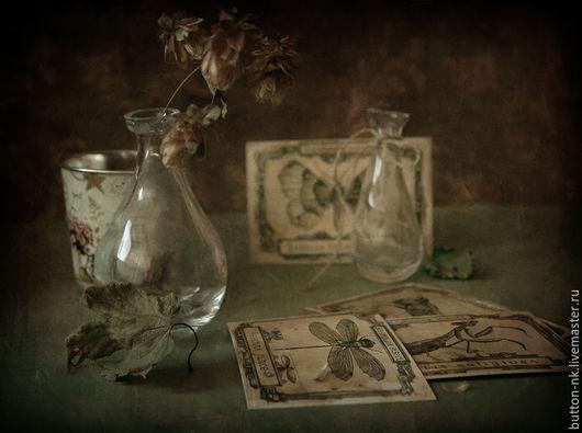 Фотокартины ручной работы. Ярмарка Мастеров - ручная работа. Купить Натюрморт Триптих Истории с открытками. Handmade. Хаки, хмель, стрекоза
