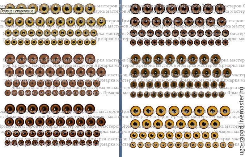 Радужка.1 часть. Распечатка А4. Глаза животных и людей, Фотокартины, Москва, Фото №1