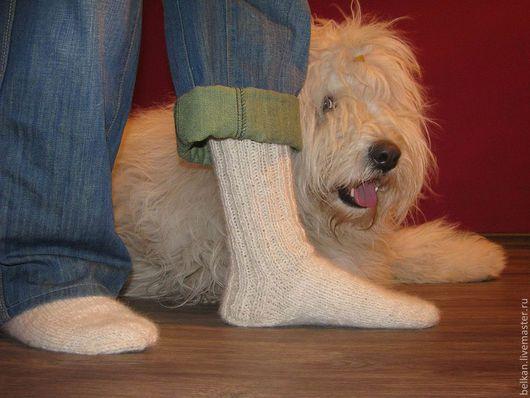 При создании этих носок, не пострадала ни одна собака)))