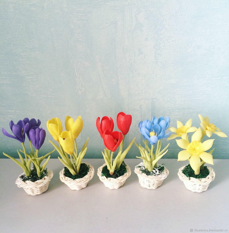 Подарок цветок нарцисс 58
