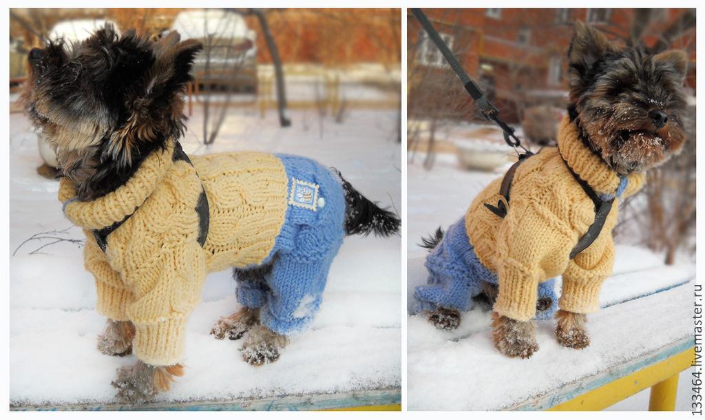 Вязаные комбинезоны для собак своими руками фото