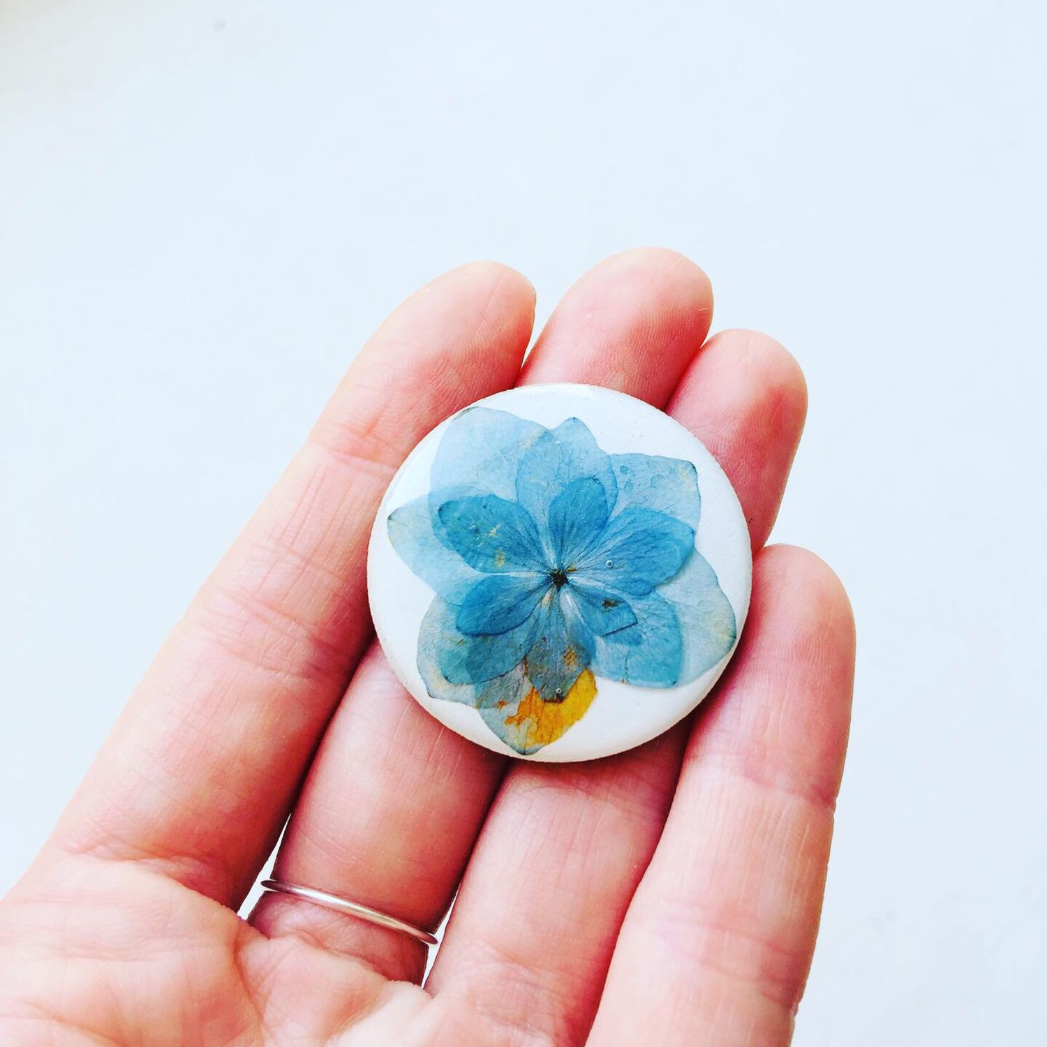 Brooch on a wooden base with fresh flowers ' Hydrangea», Brooches, St. Petersburg,  Фото №1