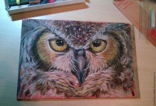 Животные ручной работы. Ярмарка Мастеров - ручная работа. Купить портрет совы - картина пастелью. Handmade. Комбинированный, портрет совы