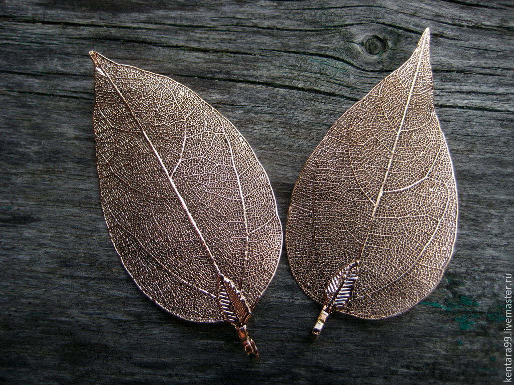 Скелетированные листья в букетах