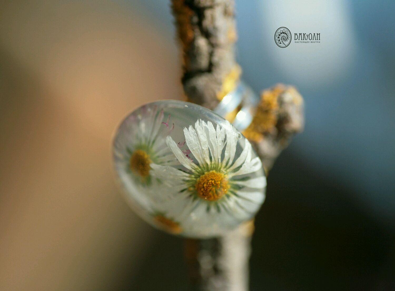 Три маргаритки - крупное кольцо из цветов в смоле, Кольца, Москва,  Фото №1