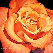 Картины ручной работы. Ярмарка Мастеров - ручная работа Акварельная картина Огненная роза. Handmade.