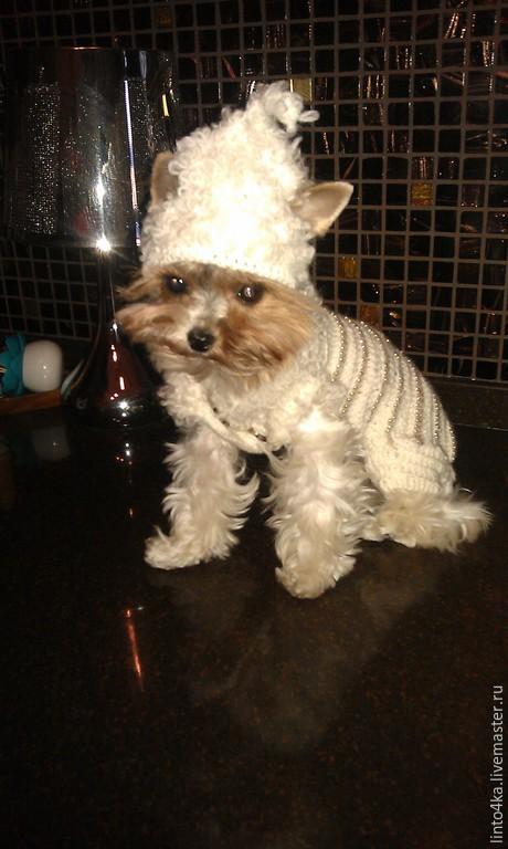 Одежда для собак, ручной работы. Ярмарка Мастеров - ручная работа. Купить Одежда для собачки. Handmade. Белый, комбинезон вязаный