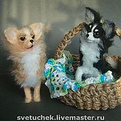 Мягкие игрушки ручной работы. Ярмарка Мастеров - ручная работа собачки Чихуахуа. Handmade.