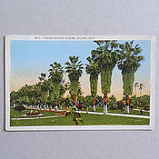 Винтаж handmade. Livemaster - original item Miami, Florida 1920s, USA, postcard views of cities. Handmade.