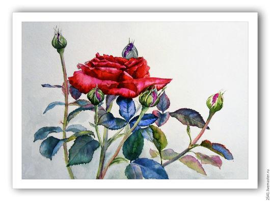 Картины цветов ручной работы. Ярмарка Мастеров - ручная работа. Купить Красная роза. Handmade. Комбинированный, картина в подарок