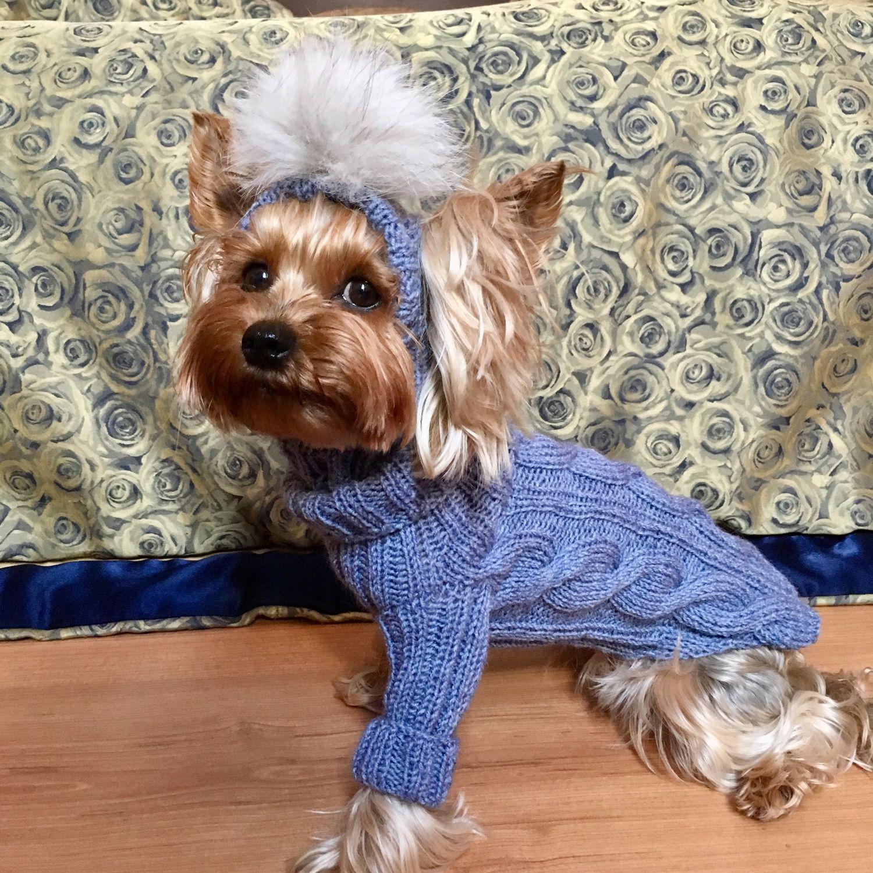 Комплект на маленькую собачку , Одежда для собак, Новочеркасск, Фото №1