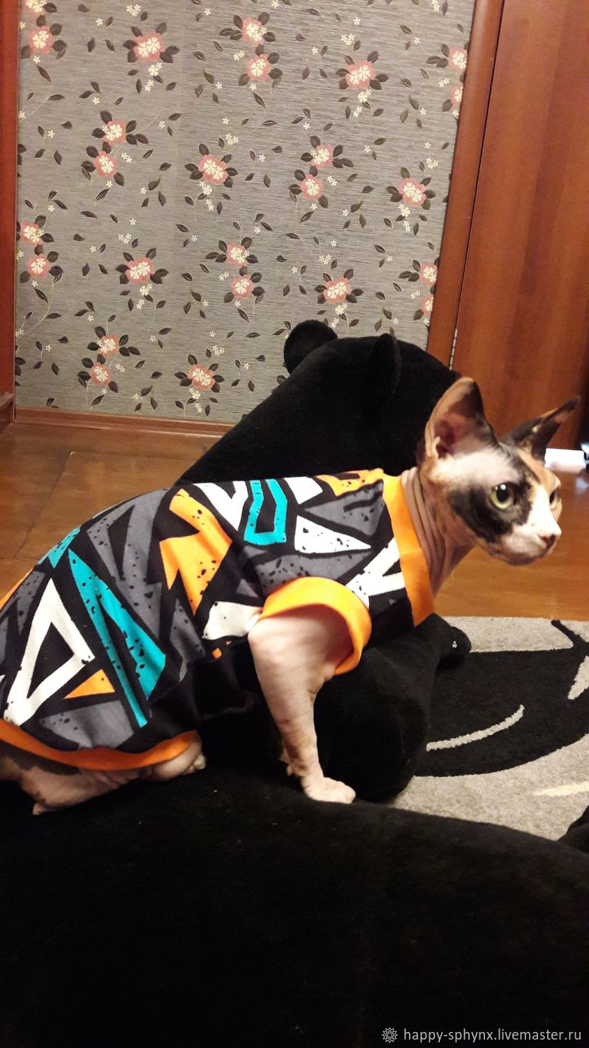 Clothing for cats 'Graffiti', Pet clothes, Biisk,  Фото №1