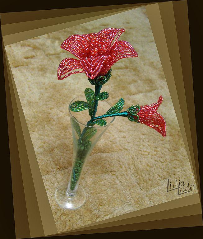 Сказочная лилия, Цветы, Львов,  Фото №1