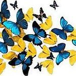 Полет Бабочки - Ярмарка Мастеров - ручная работа, handmade
