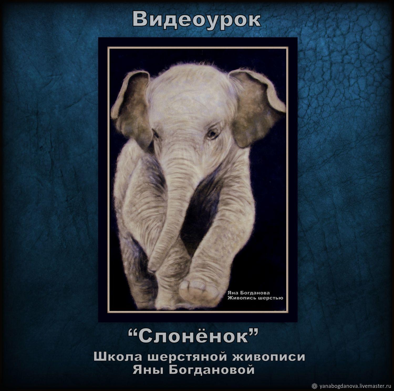видеоурок Слонёнок, Аксессуары для кукол и игрушек, Санкт-Петербург,  Фото №1