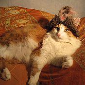 Для домашних животных, ручной работы. Ярмарка Мастеров - ручная работа Шапочки для кошек. Handmade.
