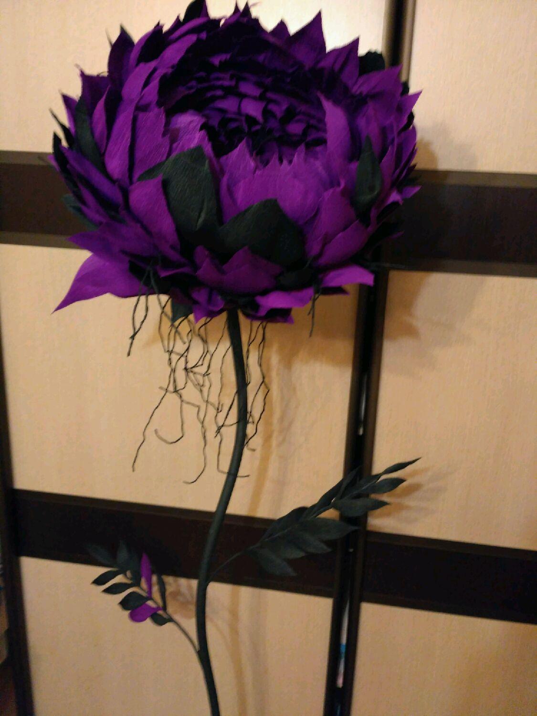 Цветы из гофрированной бумаги большие купить