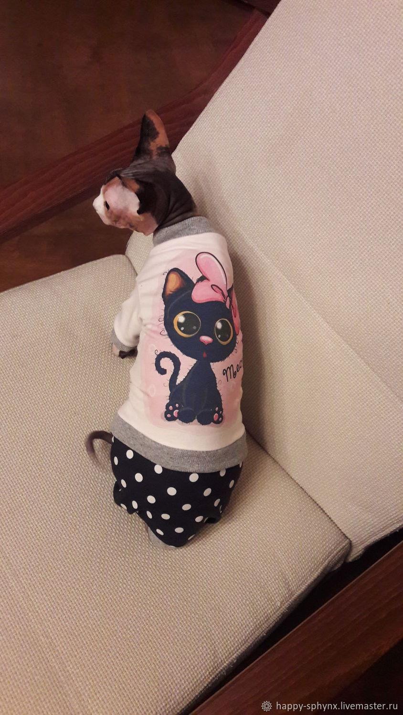 """Одежда для кошек  Полукомбинезон """"Котенок с бантом"""", Одежда для кошек, Бийск, Фото №1"""