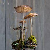 Для дома и интерьера ручной работы. Ярмарка Мастеров - ручная работа Грибной флорариум в колбе. Handmade.