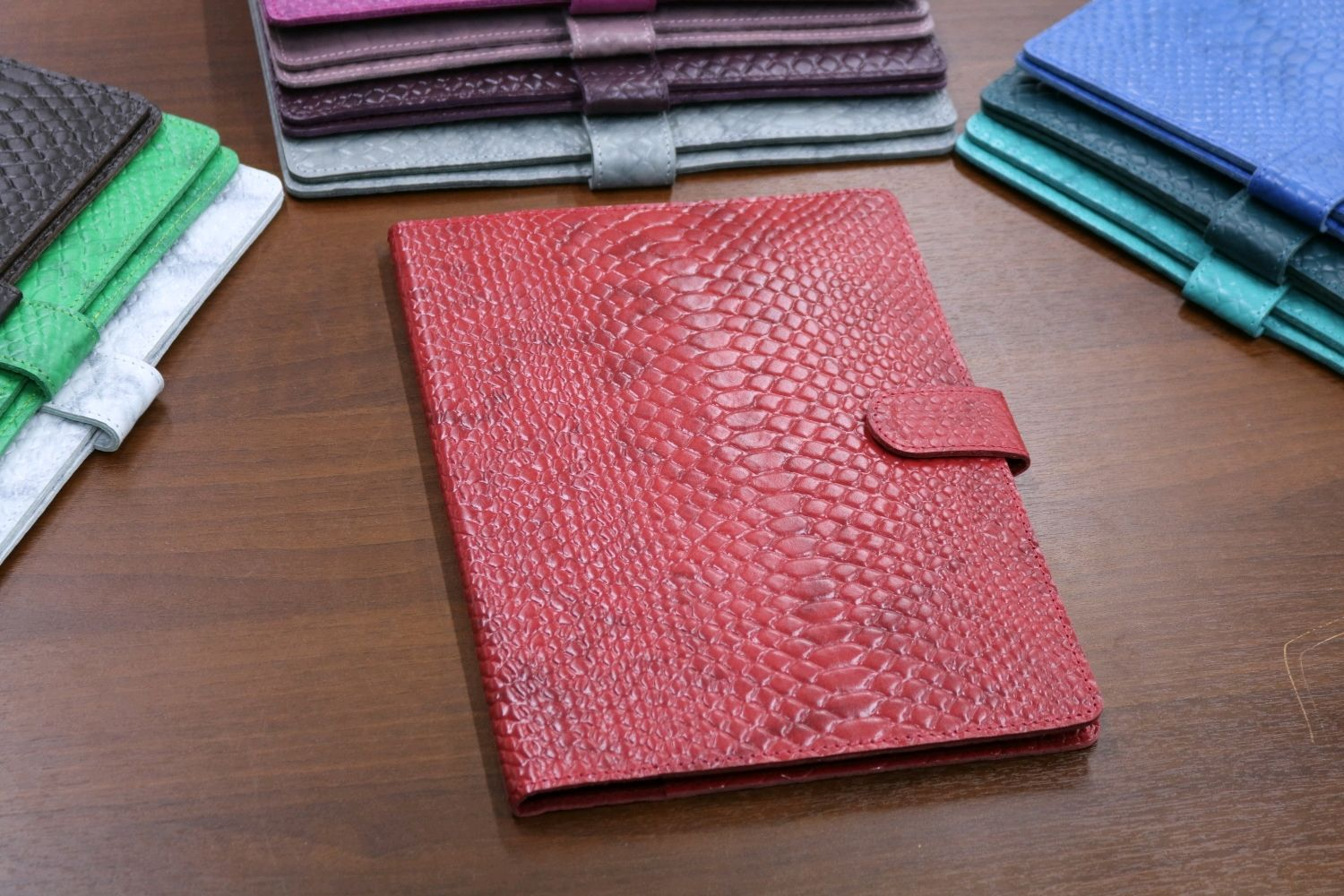 Organizer for documents format B5 red Python, Folder, Moscow,  Фото №1