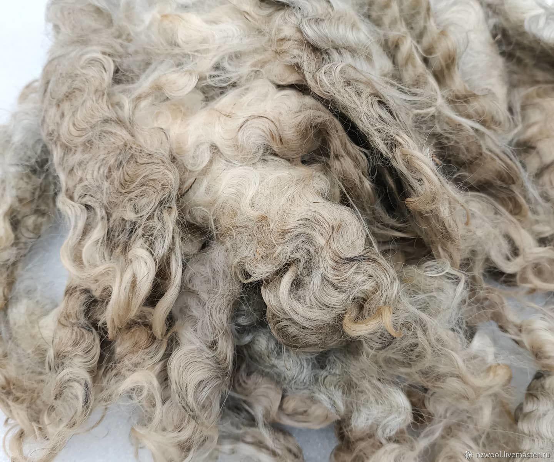 Lincoln longwool, Wool, Christchurch,  Фото №1