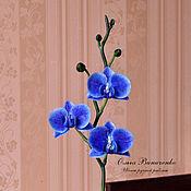 Цветы и флористика ручной работы. Ярмарка Мастеров - ручная работа Синяя орхидея фаленопсис  из полимерной глины. Handmade.