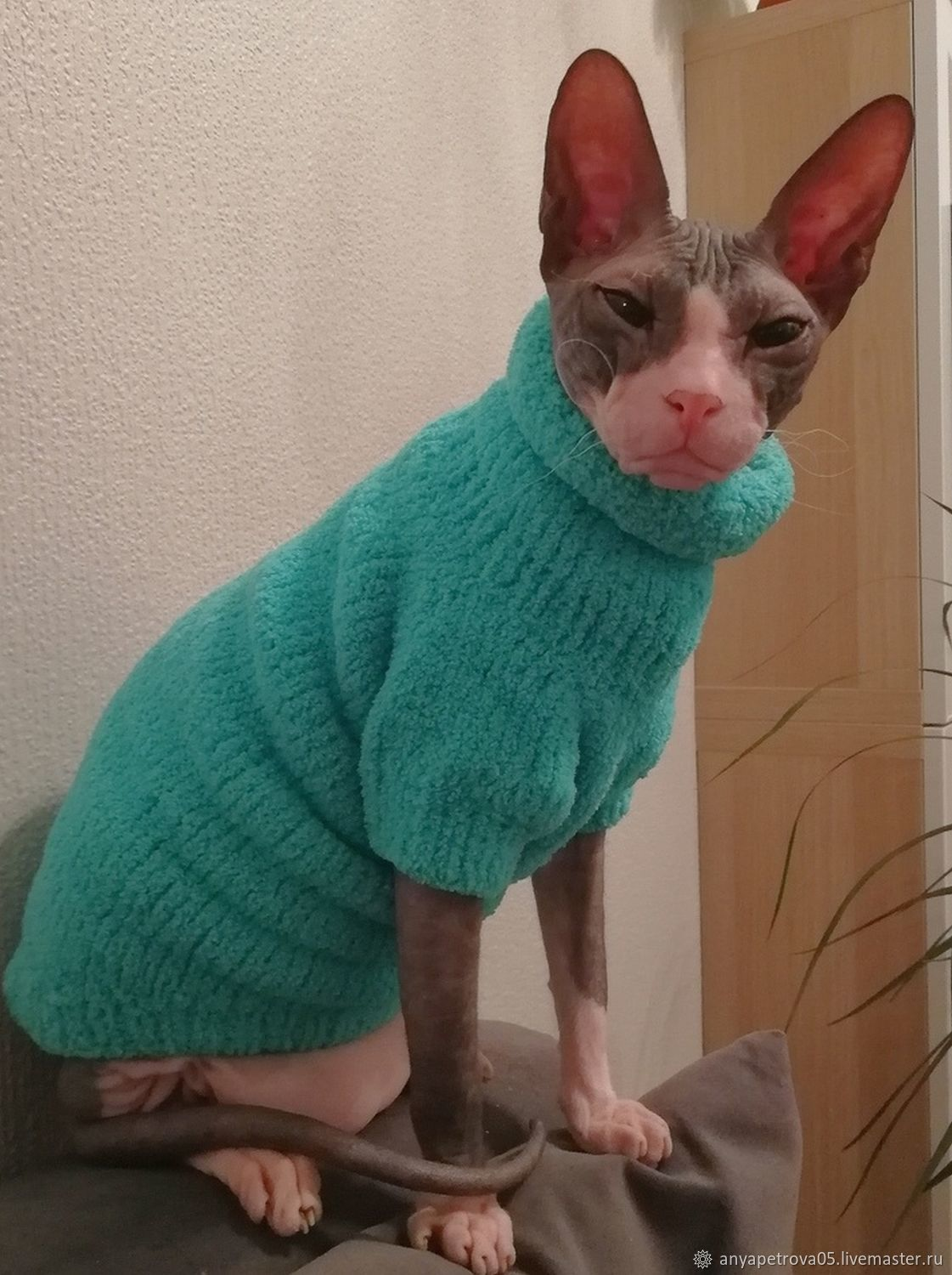 Plush sweaters for cats(cat), Pet clothes, Klin,  Фото №1