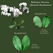 Материалы для творчества handmade. Livemaster - original item Leaves Orchid Phalaenopsis Weiners. Handmade.