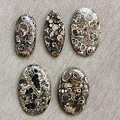 Черепаховые Агаты в ассортименте