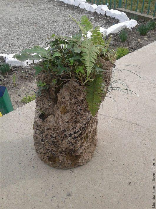 С элементами мха, пять отверстий, лесные растения.